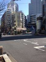 4/4桜2.jpg